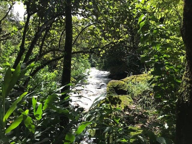 Rio principal de Visconde de Mauá