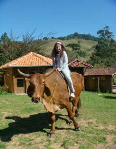 Menina em cima do boi em Visconde de Mauá