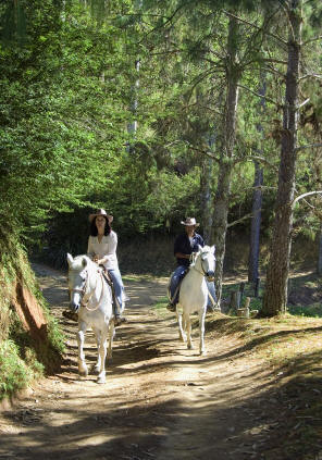 Casal a cavalo na fazenda do mel
