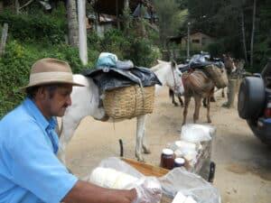 Tropeiro de Visconde de Mauá e sues desembalando os queijos