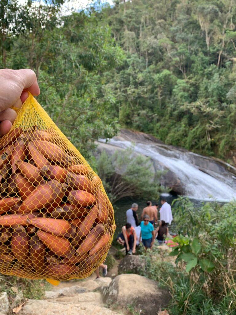 Saco de Pinhão e so fundo a cachoeira em Visconde de Mauá