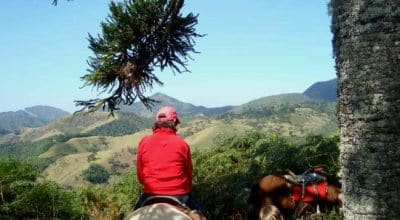 Mulher de costas em cima do cavalo com montanhas ao fundo